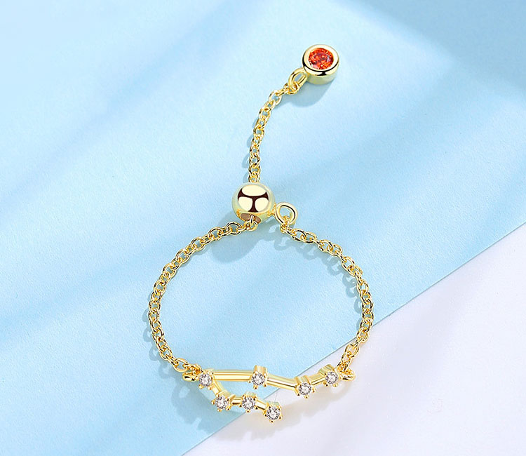 場景展示: 時尚個性十二星座鑲鑽戒指鍊